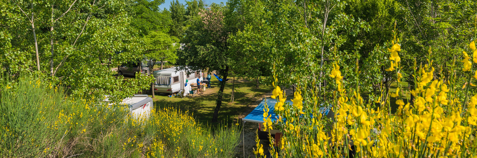 Camping Il Poggetto - Pitch Small